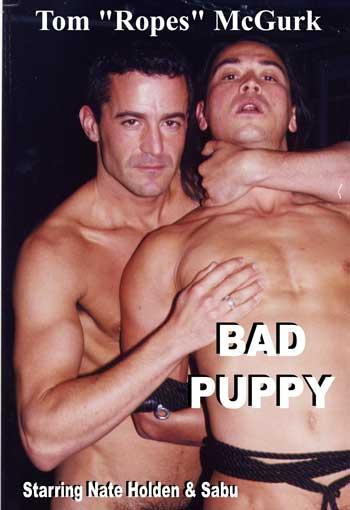 badpuppy.jpg